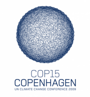 Beyond Copenhagen: Taking Stock and Looking Forward 